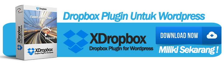 DROPBOX PLUGIN UNTUK WORDPRESS